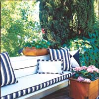 Outdoor couch and pillows surrounded by plants