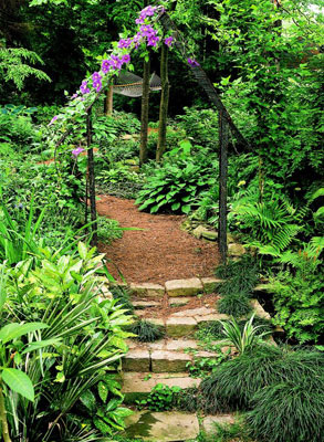 A natural stone staircase path in the middle of a lush garden