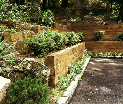 a wood retaining wall with many garden beds in it